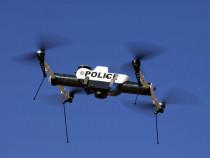 Полиция задержала преступника с помощью дрона
