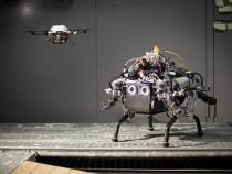 Роботы будут составлять лучшие маршруты