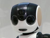 Компания Sharp показала робот смартфон RoboHon