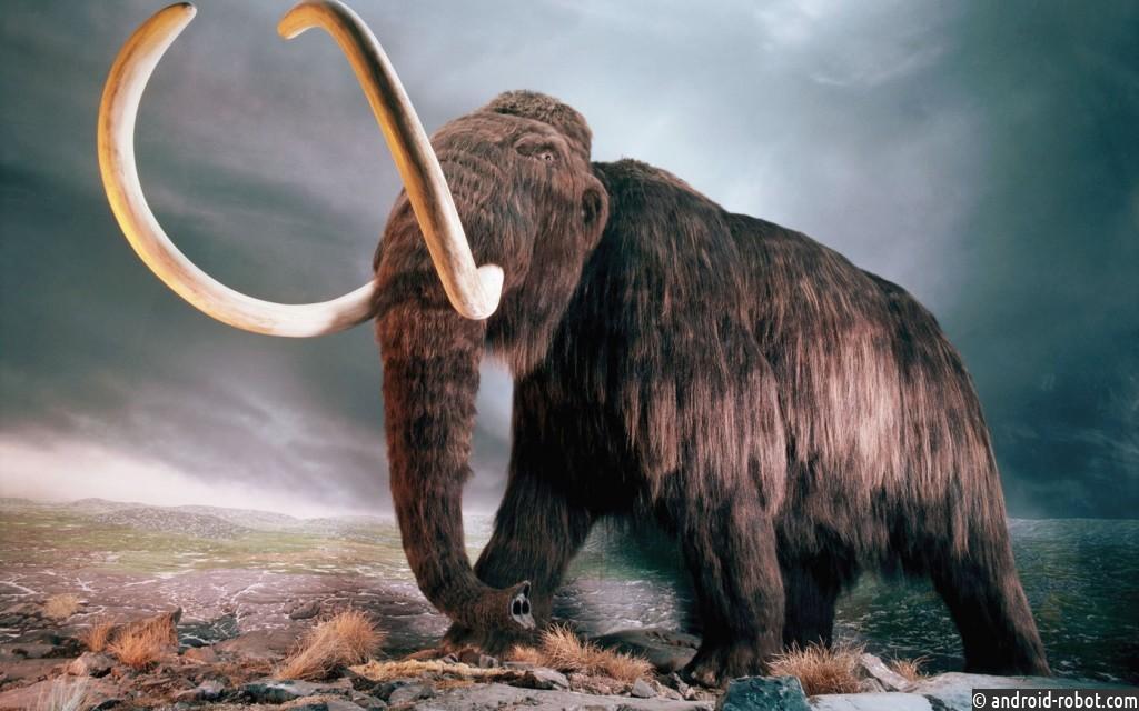 Ученые из РФ хотят клонировать мамонта