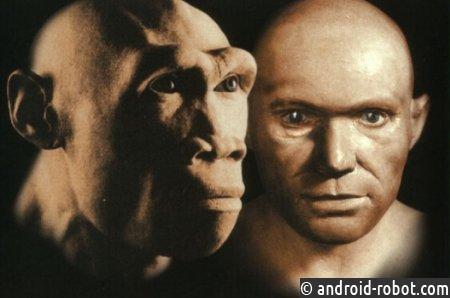 Неандертальцы передали европейцам иммунитет иалкоголизм— Ученые