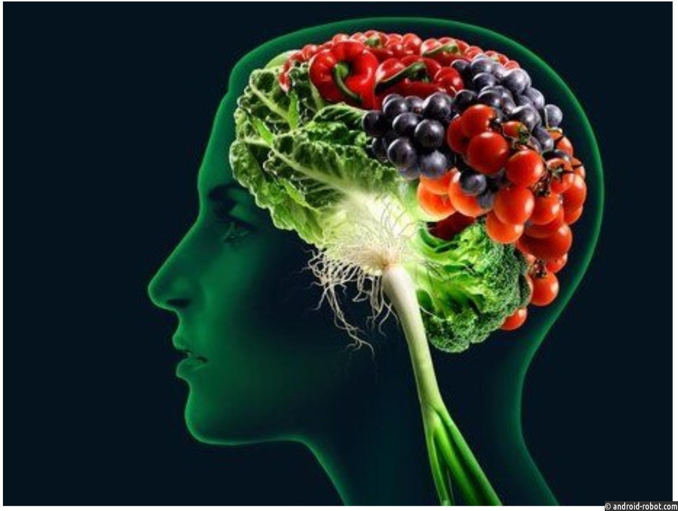 активность мозга скачеством питьевой воды