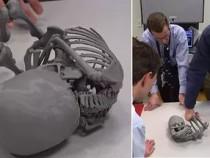 Томские ученые создали 3D-модель мумии ребенка, жившего вXIII веке