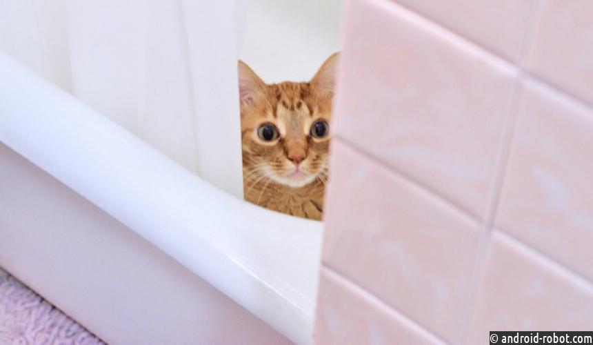 Как результативно принимать душ