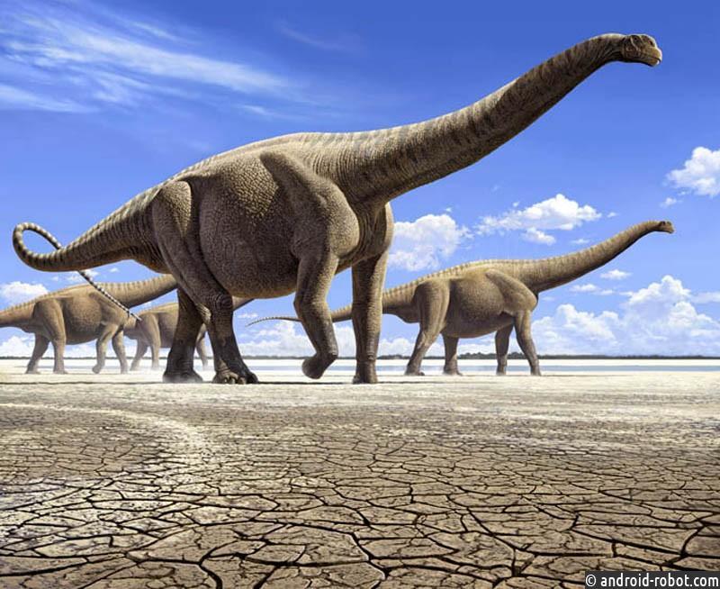 ВКитайской народной республике обнаружили мясо динозавра