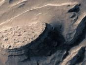 Нафотографии сМарса найден пенек окаменевшего дерева