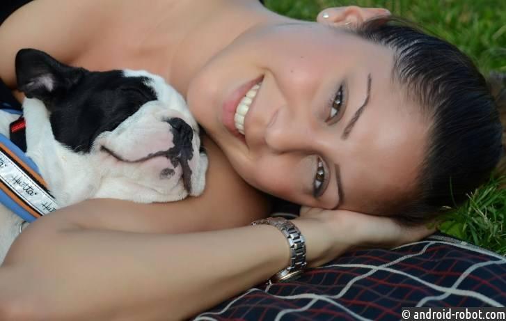 Собаки впостели ухудшают качество сна