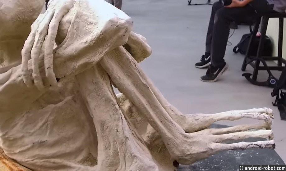 Поутверждению ученых, мумии изПеру являются рептилоидами