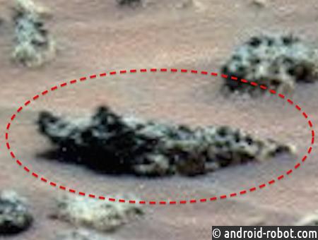 Уфолог нашел наМарсе скульптуру крокодила ибольшую бутылку