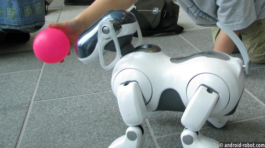 Робота-щенка сискусственным интеллектом представила компания Sony