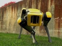 Блогеры показали, что ожидает планету после восстания роботов