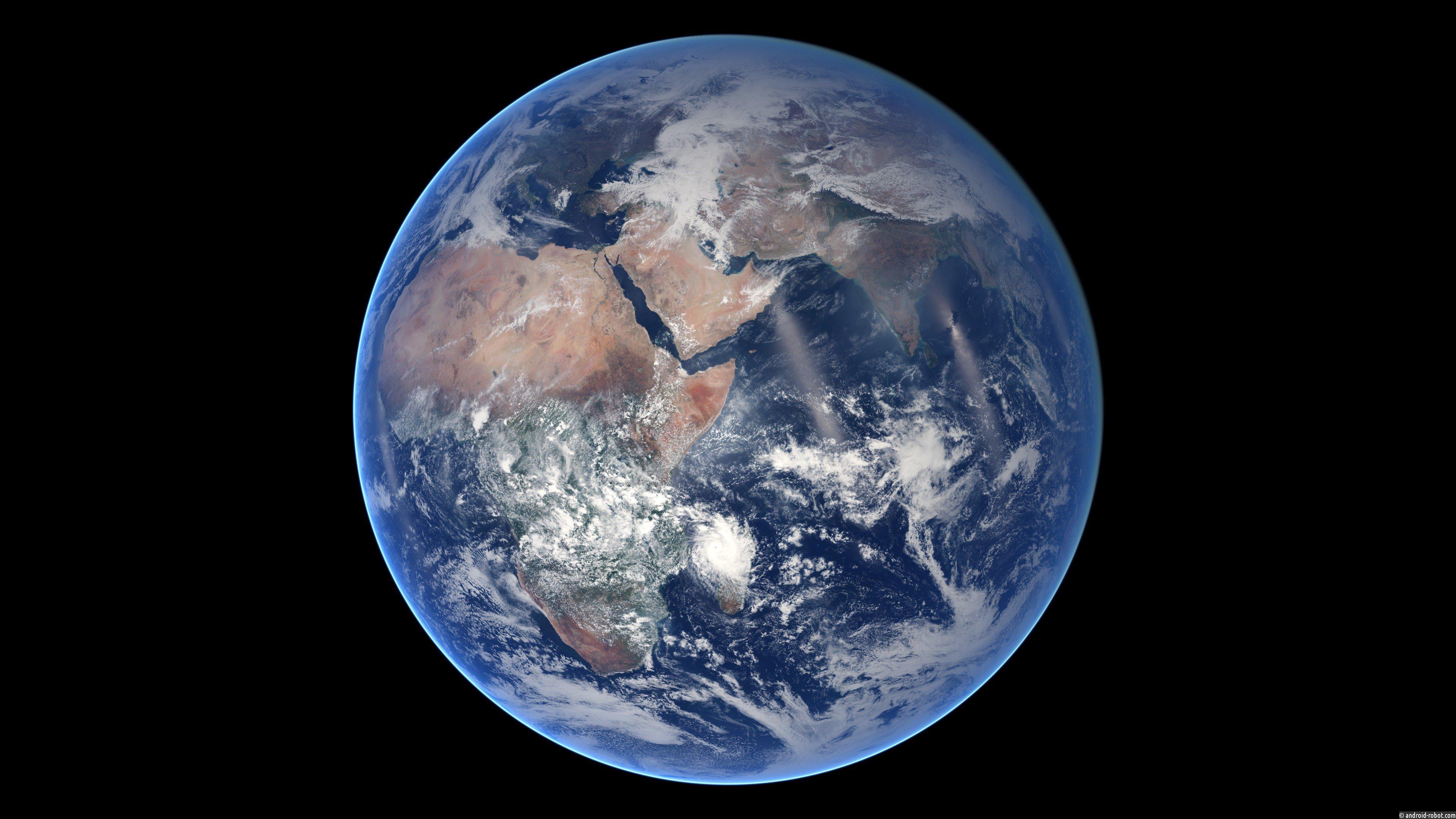 Ученые провели мировую перепись биомассы Земли