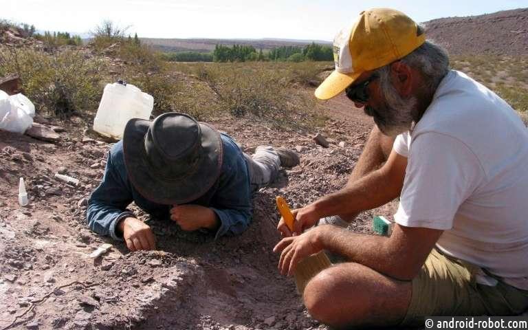 Палеонтологи открыли новые виды динозавров в Аргентине