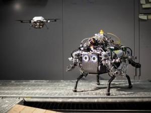 роботы прокладывают маршрут