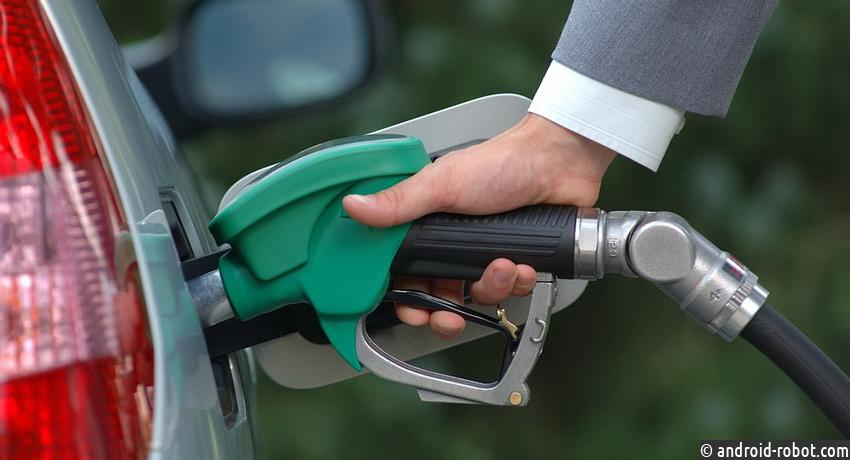Бензин будет расти надеревьях— Ученые