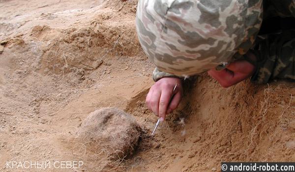 Наархеологическом памятнике вЗеленом Яру возобновились раскопки