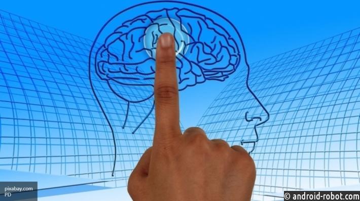 Ученые: Холестерин влияет наинтеллектуальные способности человека