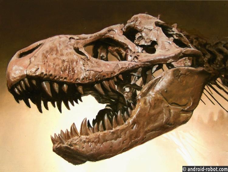 ВСША отыскали целый череп тираннозавра