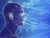 Социологи СПбГУ: 18 % работающих петербуржцев умеют программировать