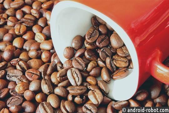 Ученые раскрыли тайну слабости человека ккофе