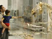 Ученые прогнозируют массовое вымирание живых существ