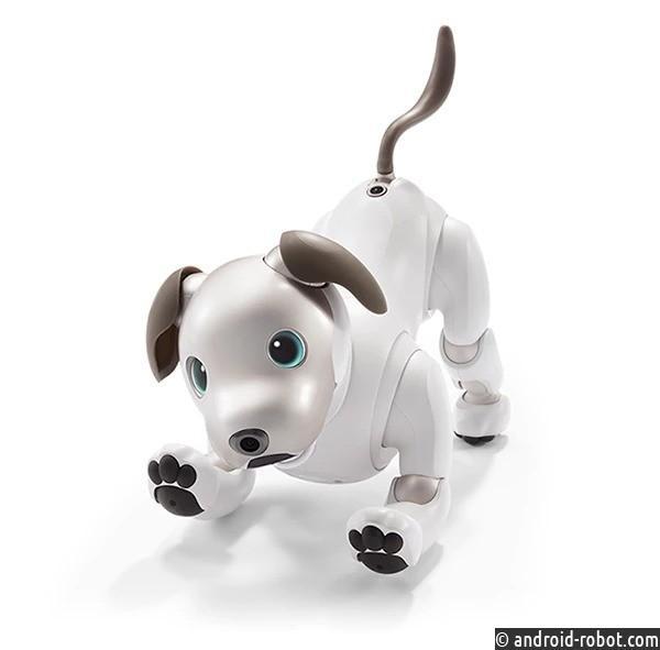 Sony представила обновленного робота-собаку Aibo