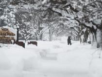 Двое мужчин изЯкутии замерзли вавтомобиле втайге