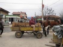 Сепаратисты подымают голову: отгосударства могут отойти три региона