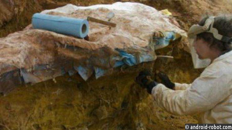 Вцентре космических полетов NASA отыскали следы сотен динозавров