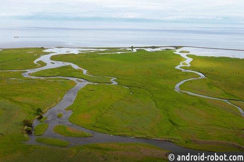 Озеро Байкал захватывают опасные водоросли— спирогира