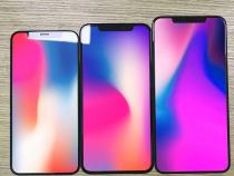 Экраны трёх новых iPhone показали нафото