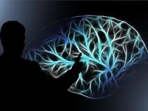 Ученые используют машинное обучение, чтобы раскрыть новое понимание человеческого мозга