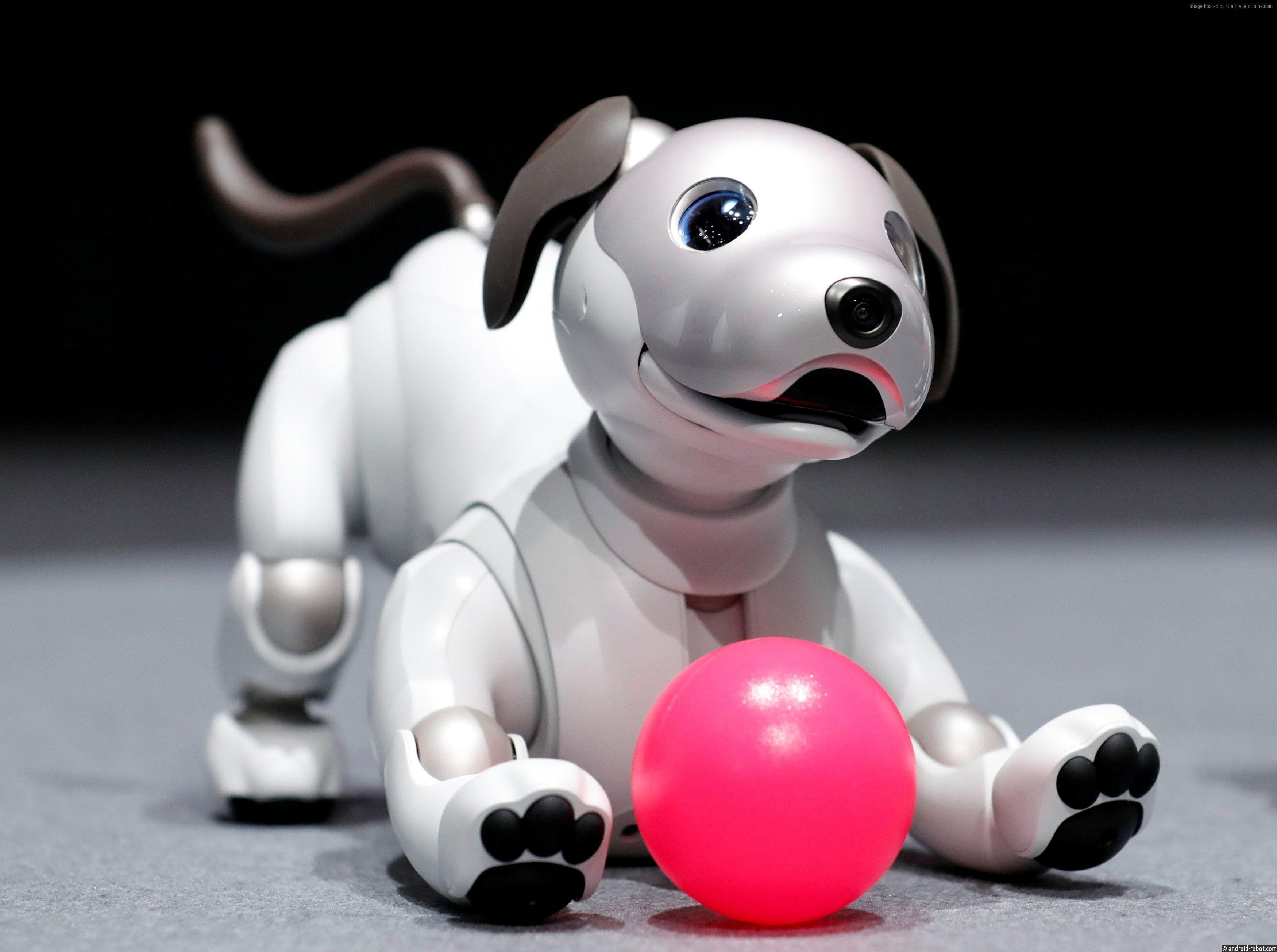 Робот-собака Sony Aibo представлен в США за $ 2,899