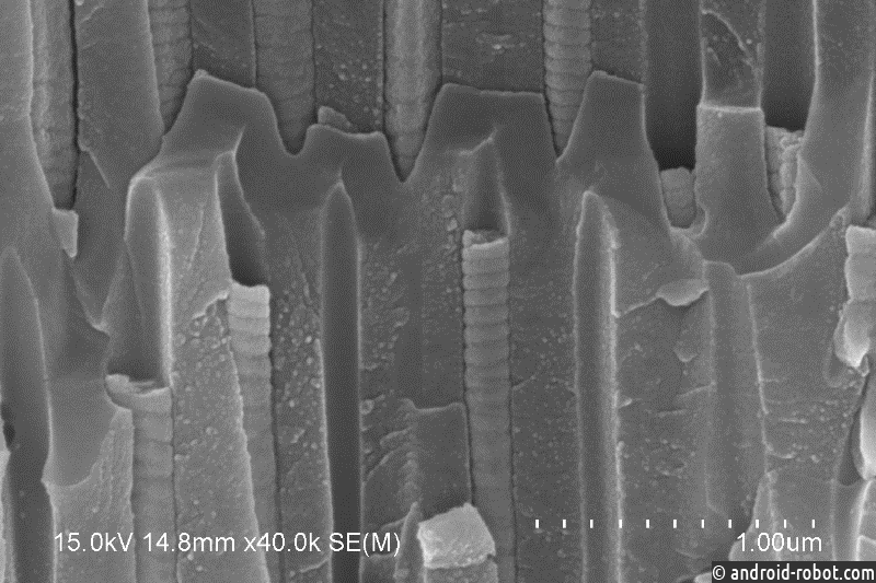 Ученые ДВФУ: что можно сделать с помощью капсул из новых нанопружин
