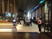В Тануки-Дубаи появился робот-официант