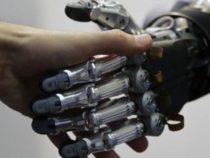 Робот получил работу в государственном учреждении