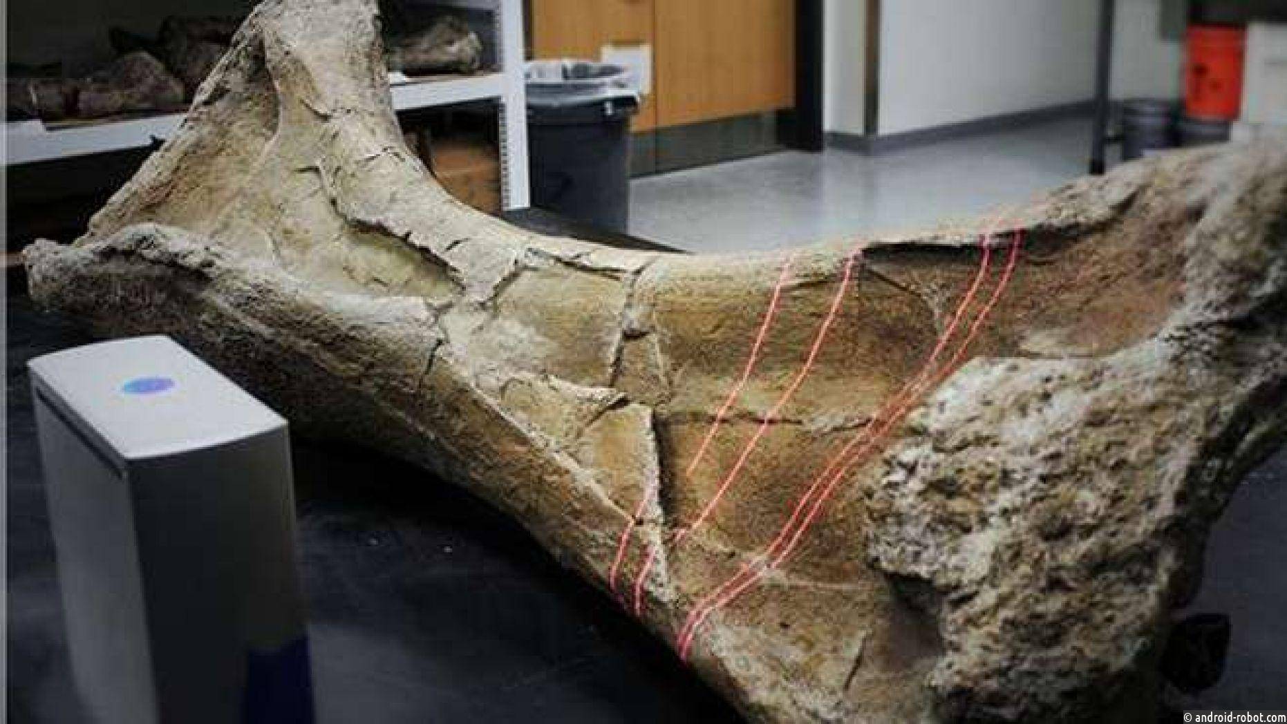 Ученые создают роботов-динозавров с использованием 3D-костей