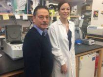 Исследователи исправляют генетическую мутацию, которая вызывает IPEX
