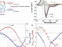 Ученые разрабатывают новый метод для мониторинга молекулярной агрегации