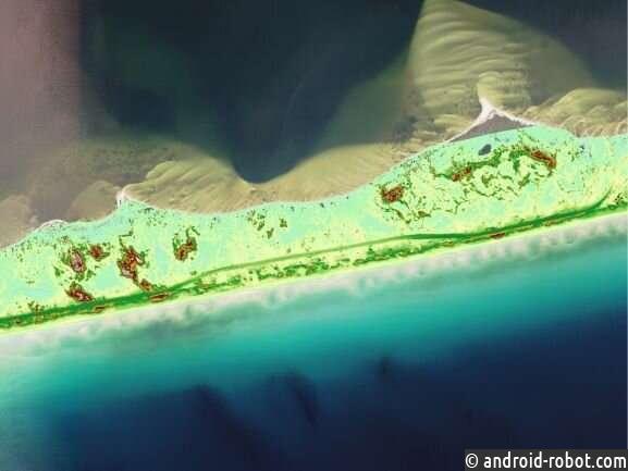 Песчаные дюны барьерного острова восстанавливаются с разной скоростью после ураганов