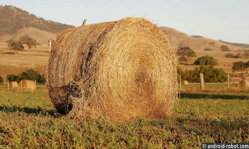 Будущее процветание зависит от сохранения окружающей среды и прибыльного сельского хозяйства