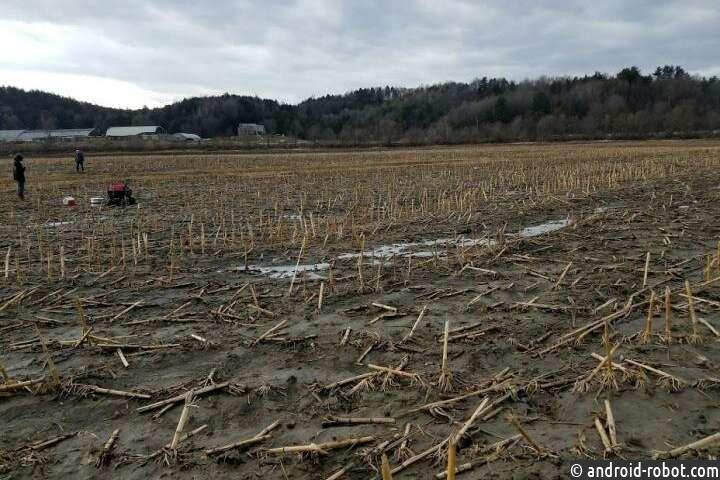 Сельскохозяйственный навоз повышает выбросы парниковых газов - даже зимой