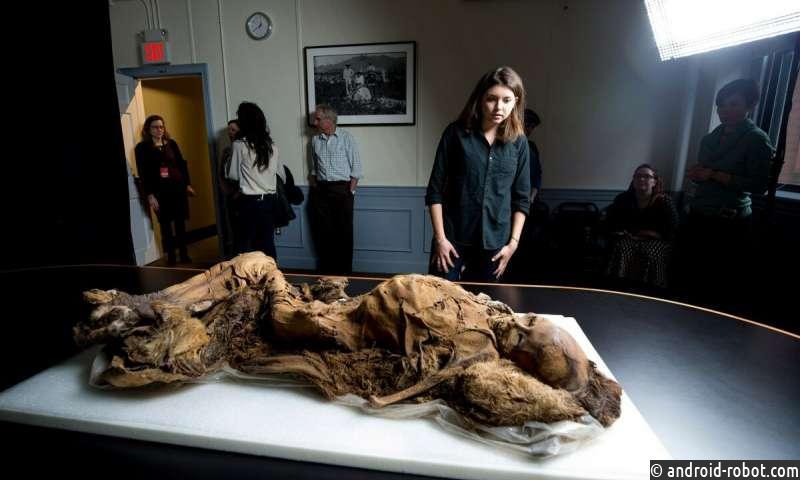 Свидетельство атеросклероза обнаружено у мумий 16-го века из Гренландии