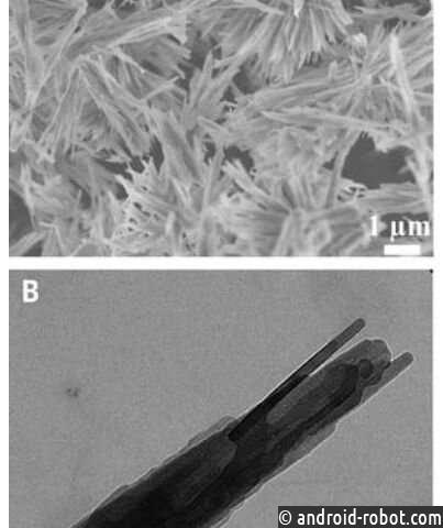 Обнаружена неизвестная ранее кристаллическая фаза полуводного карбоната кальция