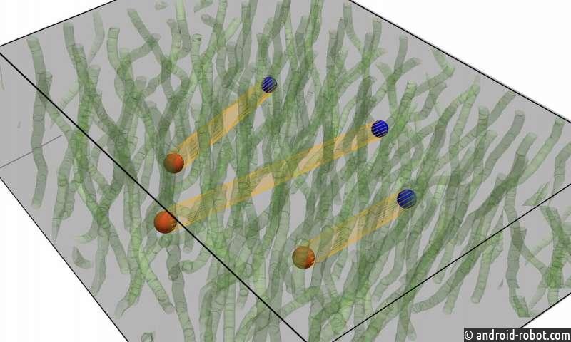 Ученые широко признают существование кварков