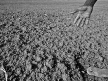 Космические технологии предсказывают засуху за несколько месяцев