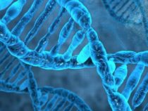 Время шагнуть внутрь вашей ДНК с помощью VR
