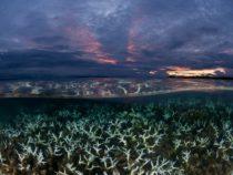 Потепление океанов в мире ускоряется быстрее, чем считалось ранее