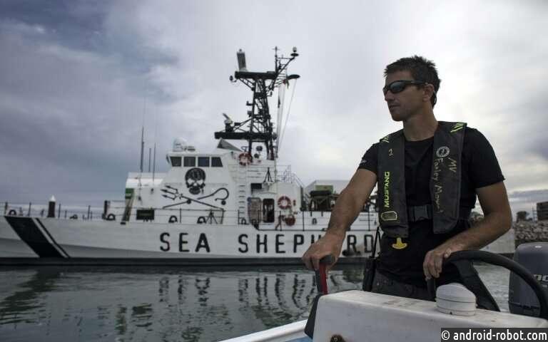 Экологи атаковали мексиканский морской патруль
