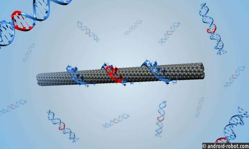 Ученые разработали метод, который навсегда изменил белковую инженерию